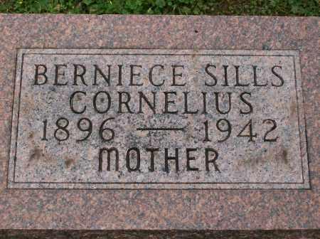 STIEBNER CORNELIUS, BERNIECE - Champaign County, Illinois | BERNIECE STIEBNER CORNELIUS - Illinois Gravestone Photos