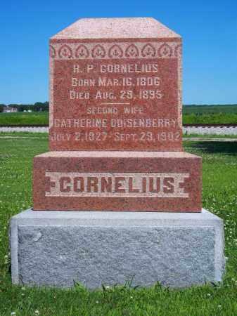 QUISENBERRY CORNELIUS, CATHERINE - Champaign County, Illinois | CATHERINE QUISENBERRY CORNELIUS - Illinois Gravestone Photos