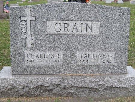CRAIN, PAULINE GERTRUDE - Champaign County, Illinois | PAULINE GERTRUDE CRAIN - Illinois Gravestone Photos