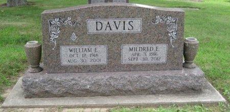 DAVIS, WILLIAM E. - Champaign County, Illinois | WILLIAM E. DAVIS - Illinois Gravestone Photos