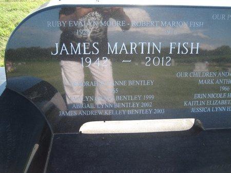 FISH, JAMES MARTIN - Champaign County, Illinois | JAMES MARTIN FISH - Illinois Gravestone Photos