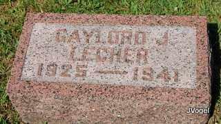 LECHER, GAYLORD J - Champaign County, Illinois | GAYLORD J LECHER - Illinois Gravestone Photos