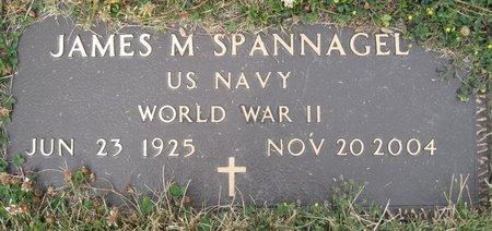 SPANNAGEL, JAMES M - Champaign County, Illinois | JAMES M SPANNAGEL - Illinois Gravestone Photos
