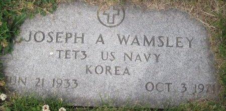 WAMSLEY, JOSEPH ALLEN - Champaign County, Illinois | JOSEPH ALLEN WAMSLEY - Illinois Gravestone Photos