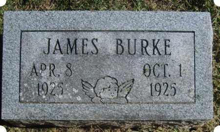 BURKE, JAMES MICHAEL - Christian County, Illinois | JAMES MICHAEL BURKE - Illinois Gravestone Photos