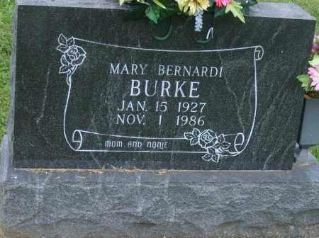 BURKE, MARY - Christian County, Illinois | MARY BURKE - Illinois Gravestone Photos