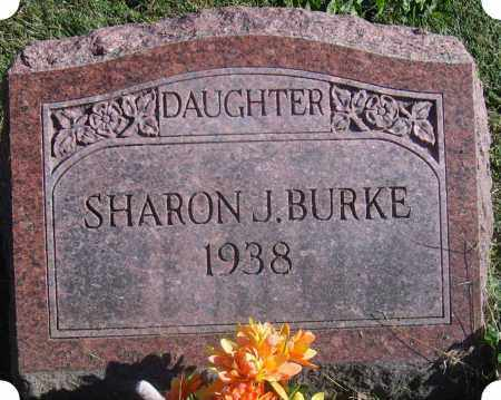 BURKE, SHARRON JOYCE - Christian County, Illinois | SHARRON JOYCE BURKE - Illinois Gravestone Photos