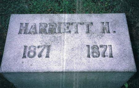 JOHNSON, HARRIET H - Christian County, Illinois | HARRIET H JOHNSON - Illinois Gravestone Photos