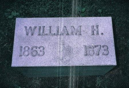 JOHNSON, WILLIAM H - Christian County, Illinois | WILLIAM H JOHNSON - Illinois Gravestone Photos