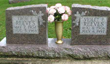 VIOLET P., REEVES - Christian County, Illinois | REEVES VIOLET P. - Illinois Gravestone Photos