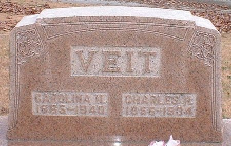 VEIT, CHARLES - Christian County, Illinois   CHARLES VEIT - Illinois Gravestone Photos