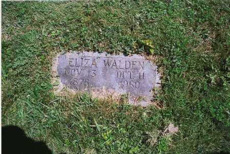 WALDEN, ELIZABETH - Clark County, Illinois | ELIZABETH WALDEN - Illinois Gravestone Photos