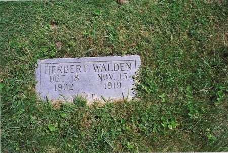 WALDEN, HERBERT - Clark County, Illinois | HERBERT WALDEN - Illinois Gravestone Photos