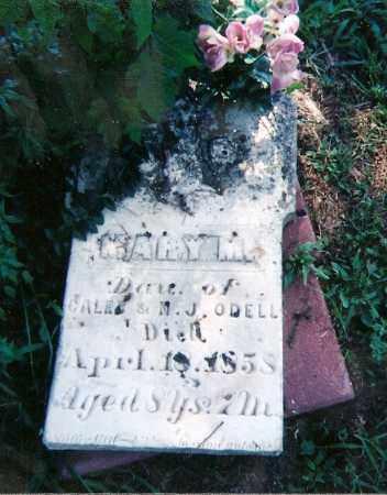 O'DELL, MARY M - Clay County, Illinois | MARY M O'DELL - Illinois Gravestone Photos
