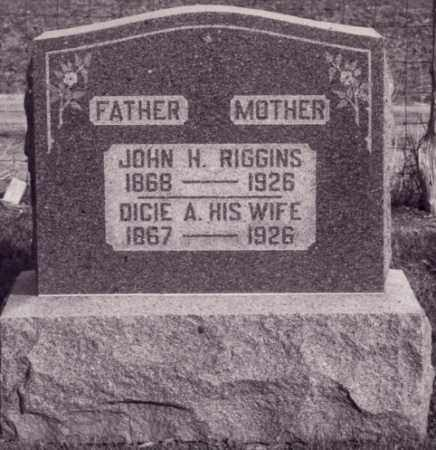 RIGGIINS, JOHN HENRY - Coles County, Illinois | JOHN HENRY RIGGIINS - Illinois Gravestone Photos