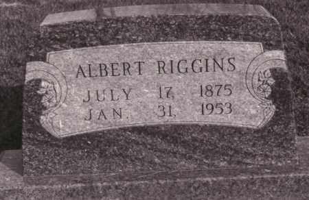 RIGGINS, ALBERT - Coles County, Illinois | ALBERT RIGGINS - Illinois Gravestone Photos
