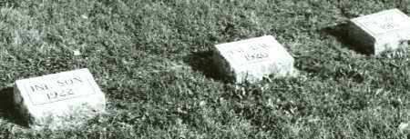 RIGGINS, INFANT SON - Coles County, Illinois | INFANT SON RIGGINS - Illinois Gravestone Photos