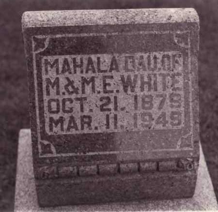WHITE, MAHALA - Coles County, Illinois | MAHALA WHITE - Illinois Gravestone Photos