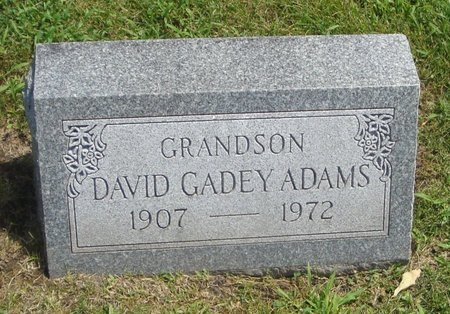 ADAMS, DAVID GADEY - Cook County, Illinois | DAVID GADEY ADAMS - Illinois Gravestone Photos