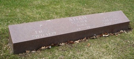 ADAMS, GOTTFRIED - Cook County, Illinois | GOTTFRIED ADAMS - Illinois Gravestone Photos