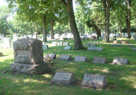 JOHNSON, IRMA - Cook County, Illinois | IRMA JOHNSON - Illinois Gravestone Photos