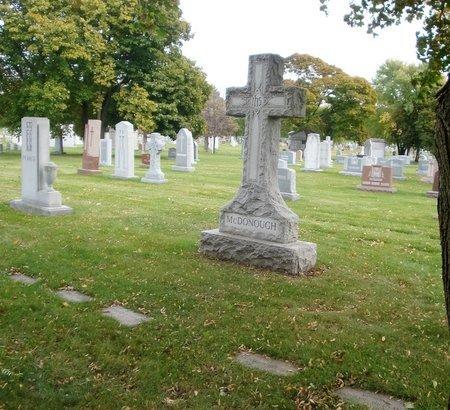 SULLIVAN, JOHN J. - Cook County, Illinois | JOHN J. SULLIVAN - Illinois Gravestone Photos