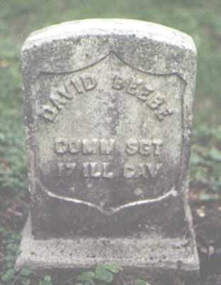 BEEBE, DAVID - Cook County, Illinois | DAVID BEEBE - Illinois Gravestone Photos