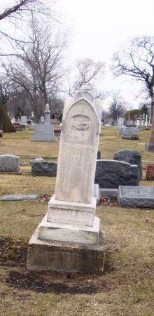 BISMARK, JOHANN - Cook County, Illinois | JOHANN BISMARK - Illinois Gravestone Photos