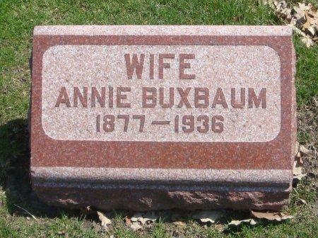 BUXBAUM, ANNIE - Cook County, Illinois   ANNIE BUXBAUM - Illinois Gravestone Photos