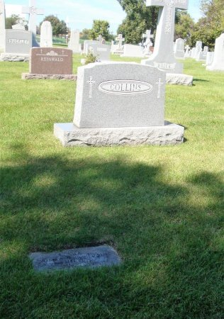 MCCARTHY, ANNETTE L - Cook County, Illinois | ANNETTE L MCCARTHY - Illinois Gravestone Photos