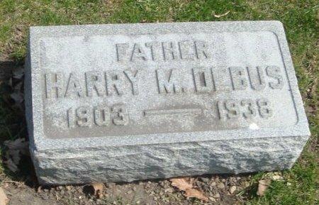 DEBUS, HARRY M. - Cook County, Illinois | HARRY M. DEBUS - Illinois Gravestone Photos