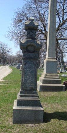 DOPP, AUGUSTE - Cook County, Illinois   AUGUSTE DOPP - Illinois Gravestone Photos