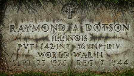 DOTSON, RAYMOND - Cook County, Illinois | RAYMOND DOTSON - Illinois Gravestone Photos