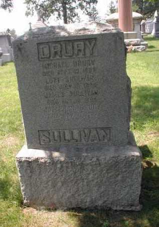 SULLIVAN, LOTT - Cook County, Illinois | LOTT SULLIVAN - Illinois Gravestone Photos