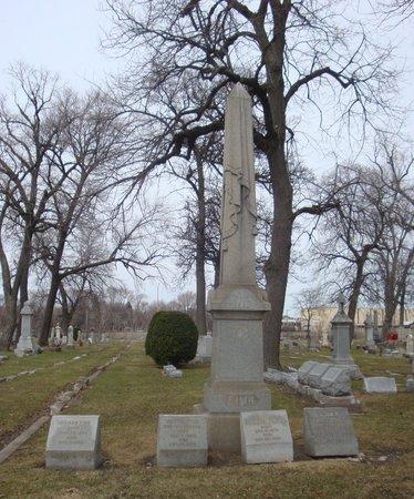 NINNEMANN FINK, BERTHA - Cook County, Illinois | BERTHA NINNEMANN FINK - Illinois Gravestone Photos