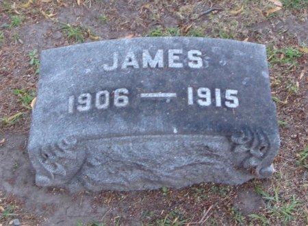 FITZGERALD, JAMES - Cook County, Illinois   JAMES FITZGERALD - Illinois Gravestone Photos