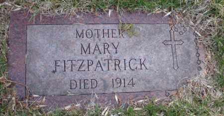 FITZPATRICK, MARY - Cook County, Illinois | MARY FITZPATRICK - Illinois Gravestone Photos