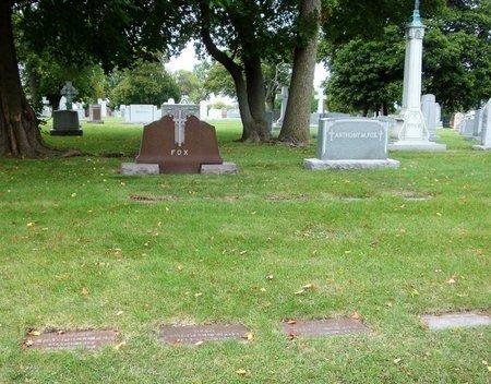 WILLIAMS, HAROLD M. - Cook County, Illinois | HAROLD M. WILLIAMS - Illinois Gravestone Photos