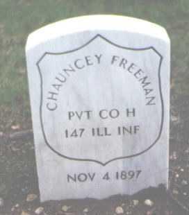 FREEMAN, CHAUNCEY - Cook County, Illinois | CHAUNCEY FREEMAN - Illinois Gravestone Photos
