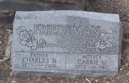 FRIEDEMAN, CHARLES H. - Cook County, Illinois | CHARLES H. FRIEDEMAN - Illinois Gravestone Photos