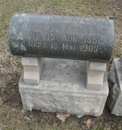 FRIESENICK, AUGUST - Cook County, Illinois | AUGUST FRIESENICK - Illinois Gravestone Photos