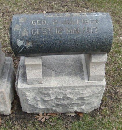 FRIESENICK, MUTTER - Cook County, Illinois   MUTTER FRIESENICK - Illinois Gravestone Photos