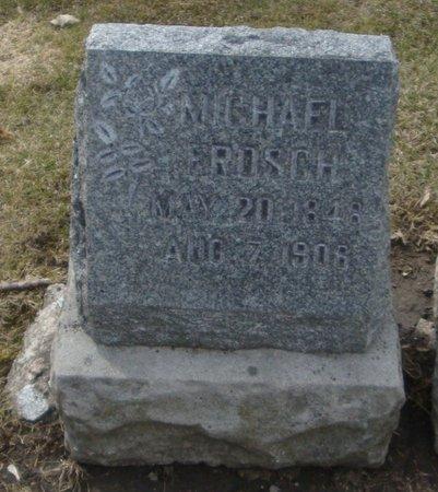 FROSCH, MICHAEL - Cook County, Illinois | MICHAEL FROSCH - Illinois Gravestone Photos