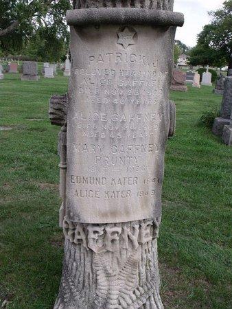 GAFFNEY, ALICE - Cook County, Illinois | ALICE GAFFNEY - Illinois Gravestone Photos