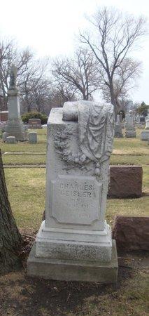 GEISLER, CHARLES - Cook County, Illinois   CHARLES GEISLER - Illinois Gravestone Photos