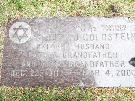 GOLDSTEIN, SIDNEY J. - Cook County, Illinois | SIDNEY J. GOLDSTEIN - Illinois Gravestone Photos