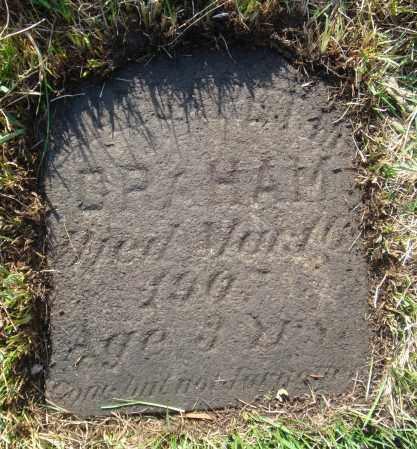 GRAHAM, MARGARET M. - Cook County, Illinois | MARGARET M. GRAHAM - Illinois Gravestone Photos