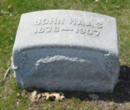 HAAS, JOHN - Cook County, Illinois | JOHN HAAS - Illinois Gravestone Photos