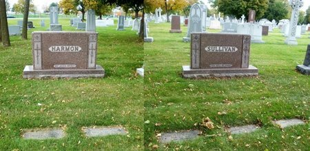 SULLIVAN, JOHN FRANCIS - Cook County, Illinois | JOHN FRANCIS SULLIVAN - Illinois Gravestone Photos