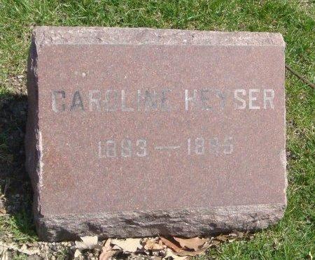 HEYSER, CAROLINE - Cook County, Illinois   CAROLINE HEYSER - Illinois Gravestone Photos